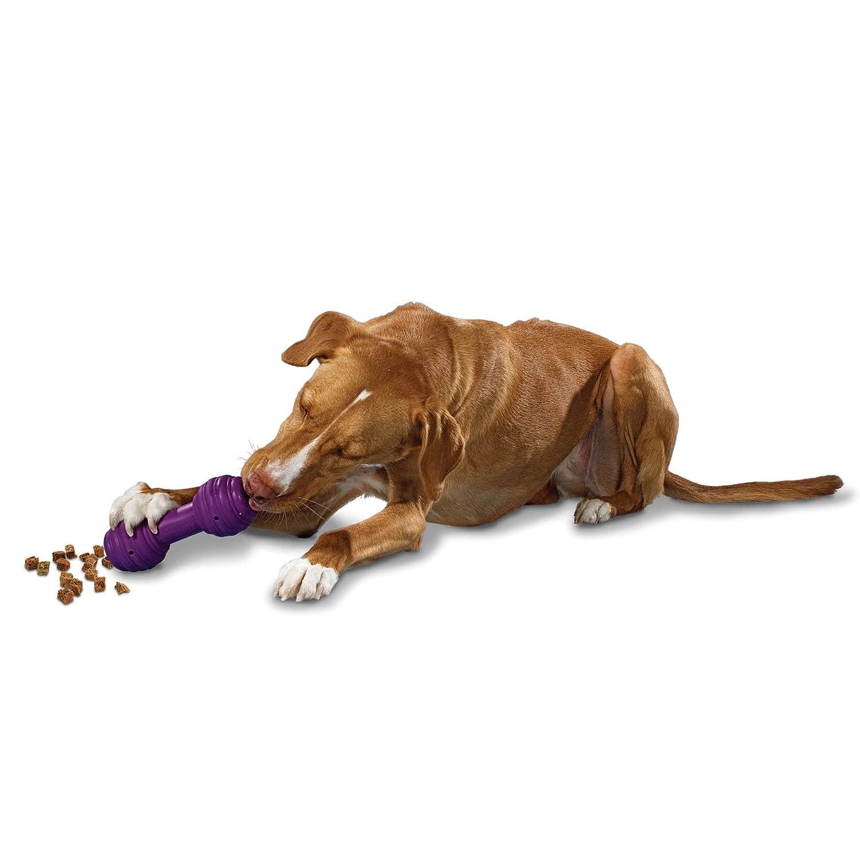 PetSafe Busy Buddy Chuckle Dog Toy