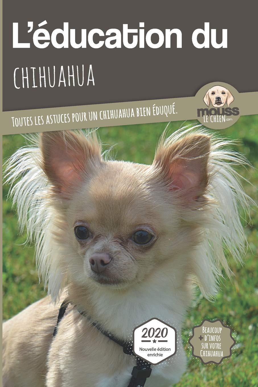 L Education Du Chihuahua Edition 2020 Enrichie Toutes Les Astuces Pour Un Chihuahua Bien Eduque Amazon Co Uk Le Chien Mouss Mova Carre 9782381760001 Books