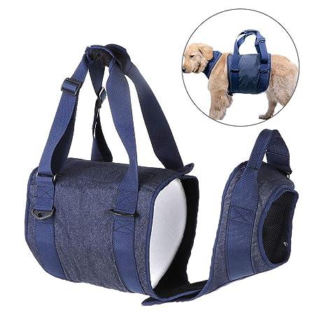 Dog Sling Assist Belt Arnés de Soporte de elevación para Perros ...