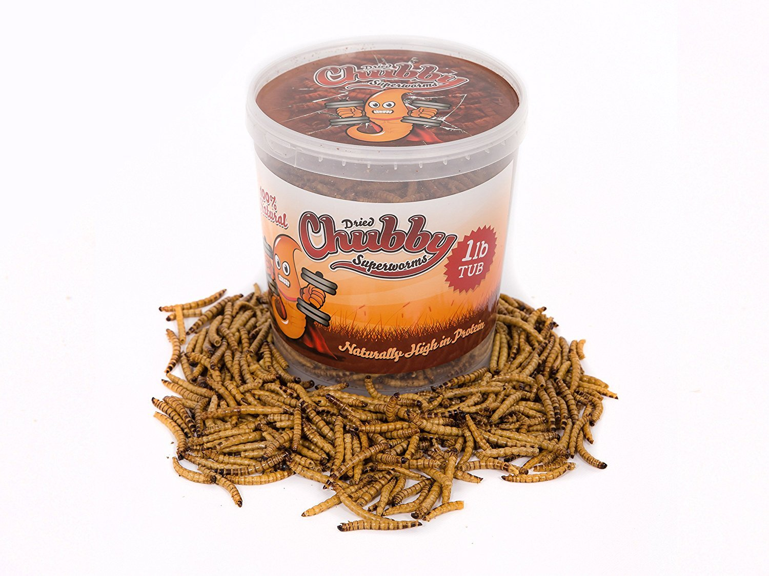 Chubby Dried Super Worms 1lb Tub