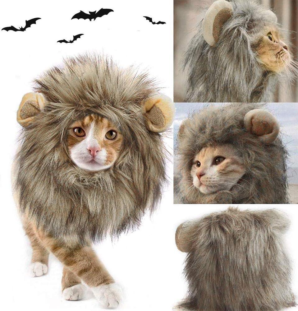Amazon.com: Peluca de Halloween para perro, gato, león ...
