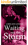 Waiting Out the Storm (Pennview Valley Confidential)