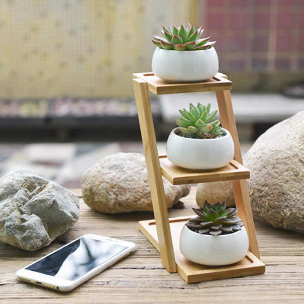 MuLuo Small Round White Ceramic Succulent Plant Pot Cactus Planter for Succulent Plants with Bamboo Tray for Room Decoration by MuLuo (Image #4)