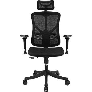 Argomax Ergonomic Mesh Office Chair High Back Swivel Desk