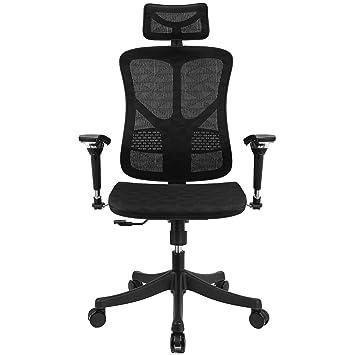Cool Amazon Com Argomax Ergonomic Mesh Office Chair High Back Forskolin Free Trial Chair Design Images Forskolin Free Trialorg