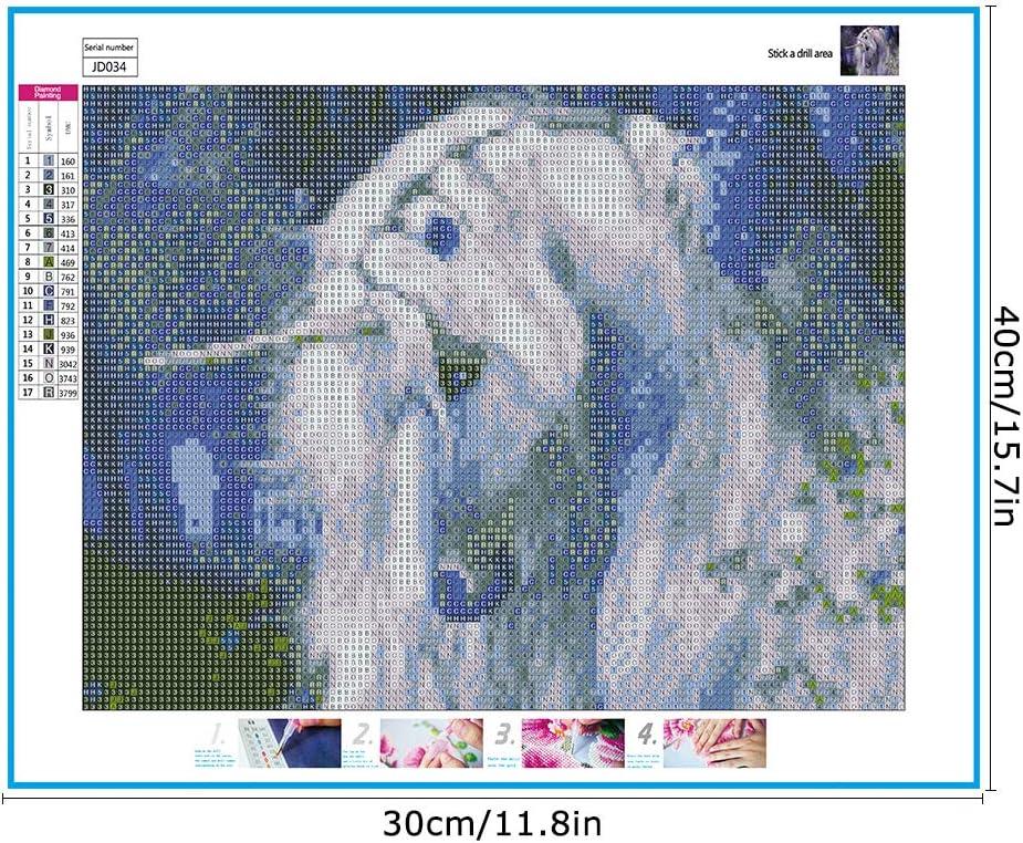 30 x 40 cm Toile Strass Broderie Peinture De Diamant D/écoration pour Maison Salon D/écor Mural Soleebee 5D DIY Plein Diamant Peinture Point De Croix par Num/éro Kit Chat de Lune