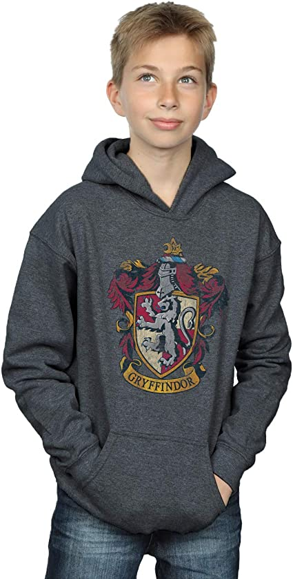 HARRY POTTER Boys Gryffindor Distressed Crest Hoodie