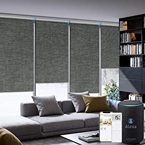 Graywind Motorized Roller Shades 100% Blackout Remote Alexa Voice Control Insulated Triple Weaved Fabric Window Blinds with Valance for Smart Home Office, Customized Size, Dark Grey