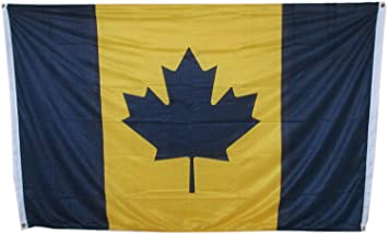 Image result for maize and blue maple leaf
