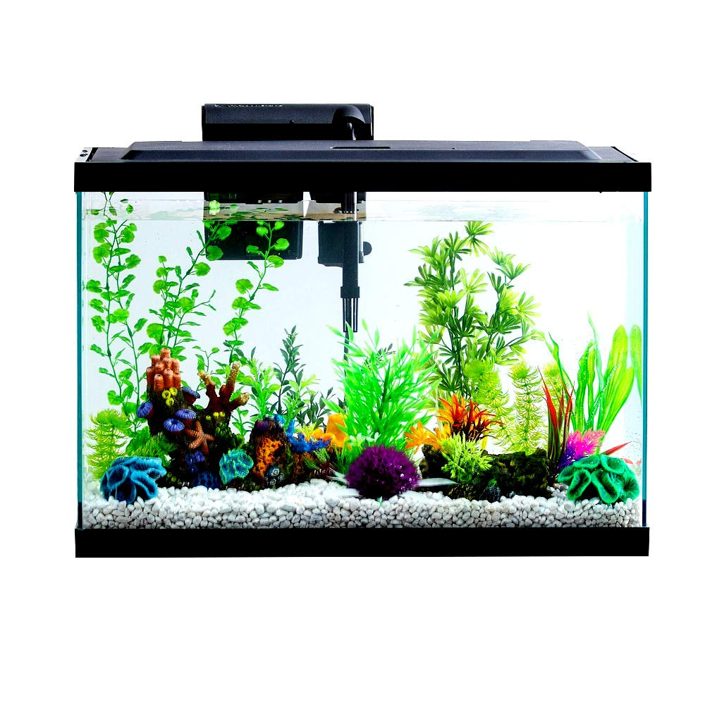 Aquarium Starter Kit 29 Gallon with Led Light Contains Samples of Tetra Food and Water Care - Skroutz Deals by Unknown