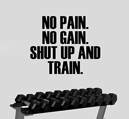 No Pain Gain Quote Wall Sticker Art Home Decal wallart Inspiration Gym Fitness b