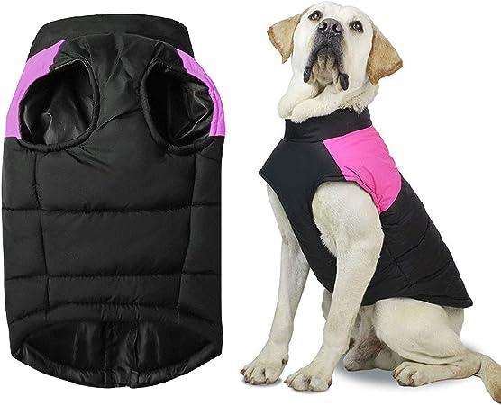 Oferta amazon: Shinmax Abrigo para Perros Chaqueta Cálida, Traje de Nieve a Prueba de Viento Chaleco para Perros Pequeños y Medianos Forro de Algodón Suave, Chaleco para Mascotas con Arnés con Anillo en D