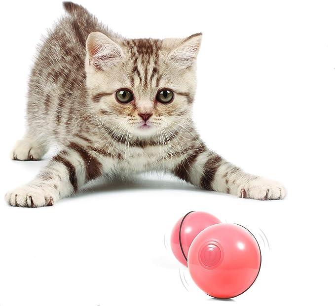 Juguetes interactivos para Gatos Juguetes Inteligentes para Gatos Juguetes para Gatos con Hierba gatera Azul Viene con Peque/ñas Bolas y Pluma Everpertuk Juguetes para Gatos