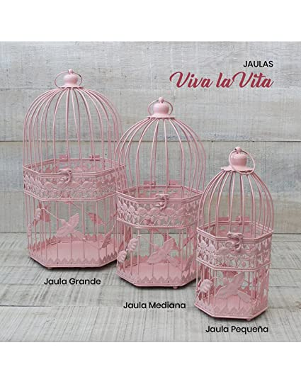 Hogar y Mas Jaula decorativa Rosa de metal para decoracin Diseo