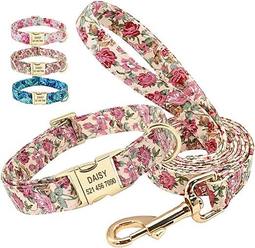 Beirui - Juego de correa de 150 cm y collar para perro con placa ...