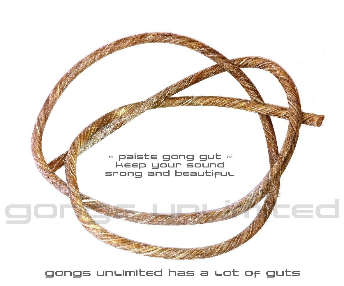 Paiste Gong Gut for 20