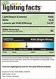 TOPELE JSL-03W LED Flood Light, Security