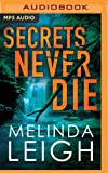 Secrets Never Die (Morgan Dane)