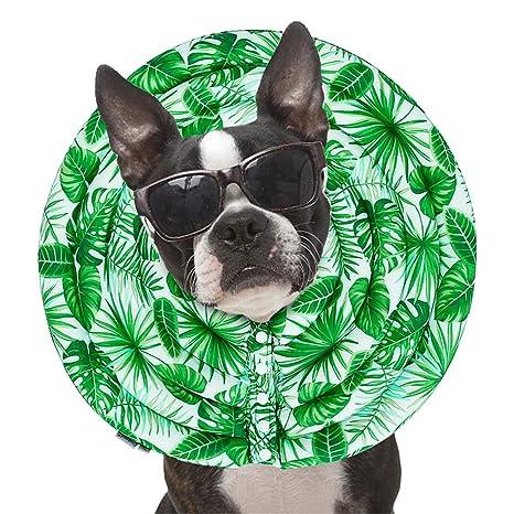 Wankd Collares isabelinos para Perros,Elizabeth Circle Soft Pet Collares isabelinos Perro Gato Protector Anti