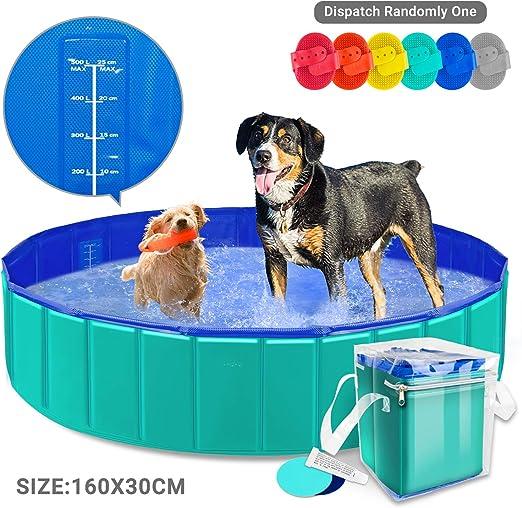 AYITOO Bañera para Perros, PVC Antideslizante y Resistente al Desgaste Piscina para Mascotas Perros, Bañera Plegable de Mascotas para Mascotas, Natación Piscina para Perros 160 cm x 30 cm: Amazon.es: Productos para