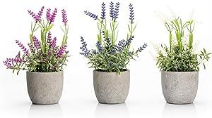 Velener Mini Fake Lavender Flowers in Pot for Home Decor (3 in 1)