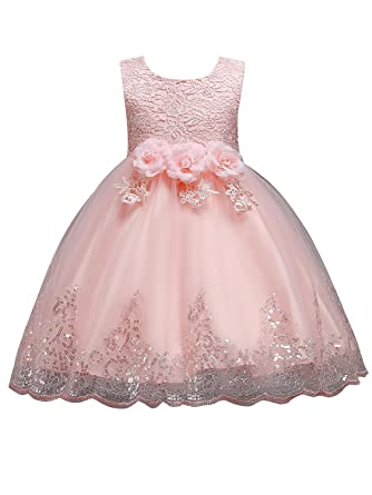c480fa9b470 MisShow Girls Dress Rose Flower Embroidery Pageant Dress Princess Ball Gown (Nude