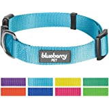 Blueberry Pet 8 Colors Classic Nylon Dog Collars & 5 Colors Personalized Collars, Matching Leash & Harness Available Separately