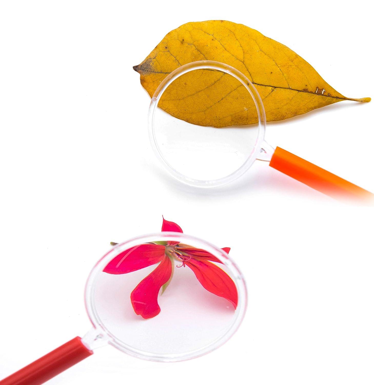 Forscher /& Detektive zum erforschen von Insekten Pflanzen usw Taschenlupe als Mitgebsel Mitbringsel Gastgeschenk Giveaways zum Kindergeburtstag L+H 12x Lupen Set Kinder gemischte Farben Lupe f
