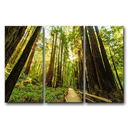 Amazon.com: Canvas Print Wall Art Painting For Home Decor, Fenced ...