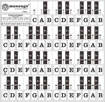 Benkeg pegatinas de teclado de piano,Pegatinas de teclado de ...