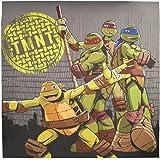 "Teenage Mutant Ninja Turtles Cross Hatching Fabric Shower Curtain 72"" x 72"""