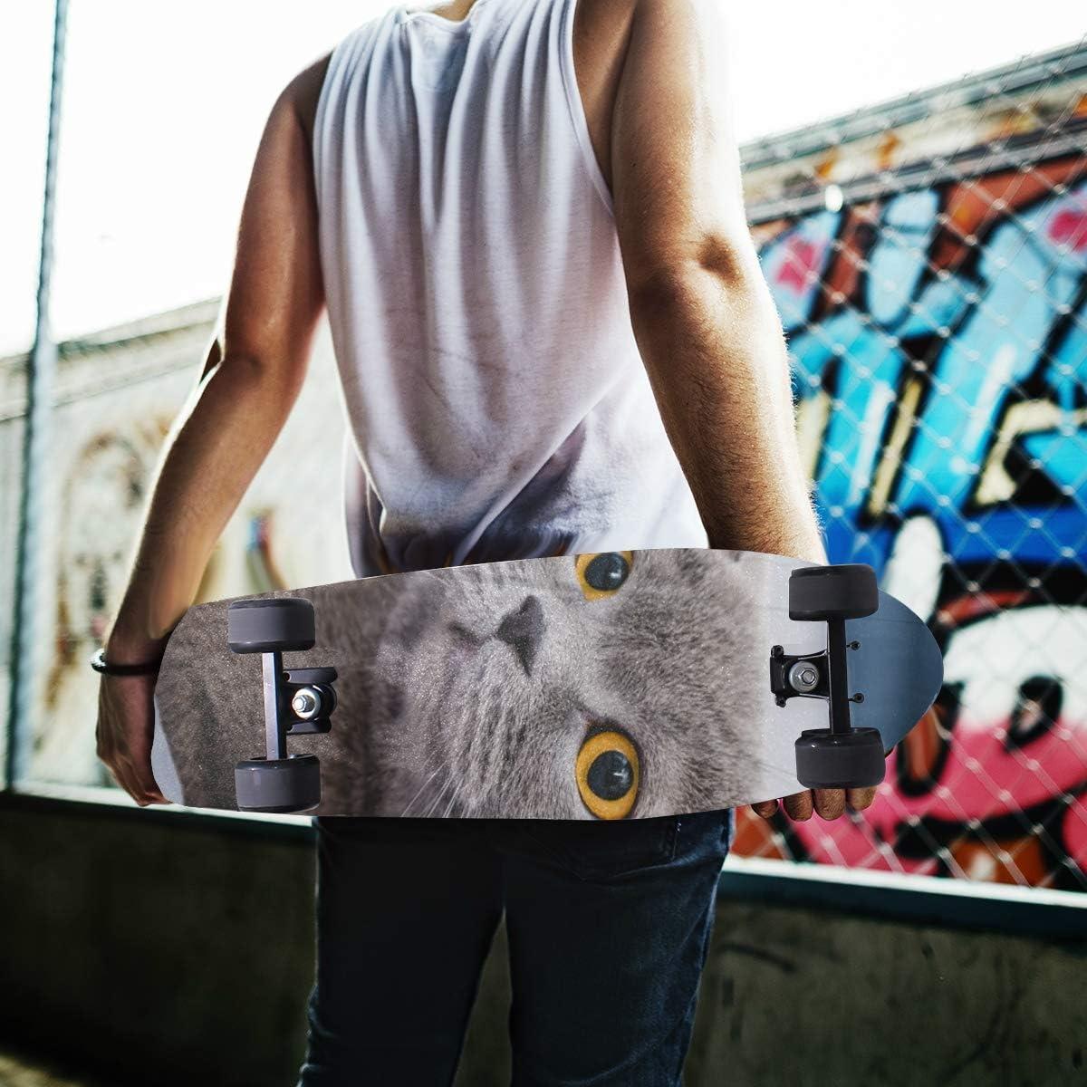 MNSRUU Shorthair Cat Planche de skateboard Grip Planche de trottinette Papier sable 22,9 x 33