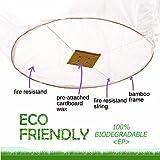 Biodegradable Sky Lanterns,No Assembly