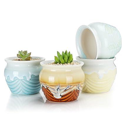 Amazon Com Greenaholics Succulent Plant Pots 3 3 Inch Flowing