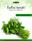 FARM SEEDS Hybrid Coriander Green Aroma 1 packet seeds Seed (10000 per packet)