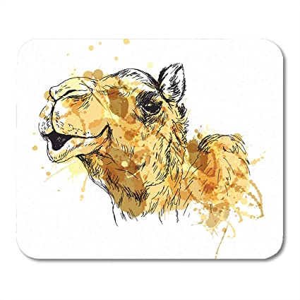Amazon com : Emvency Mouse Pads Watercolor Funny Colored