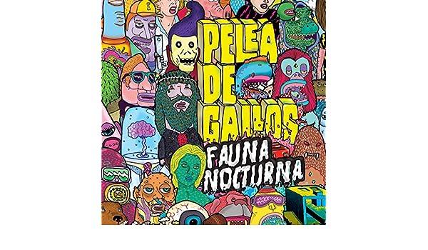 La Lata by Pelea de Gallos on Amazon Music - Amazon.com