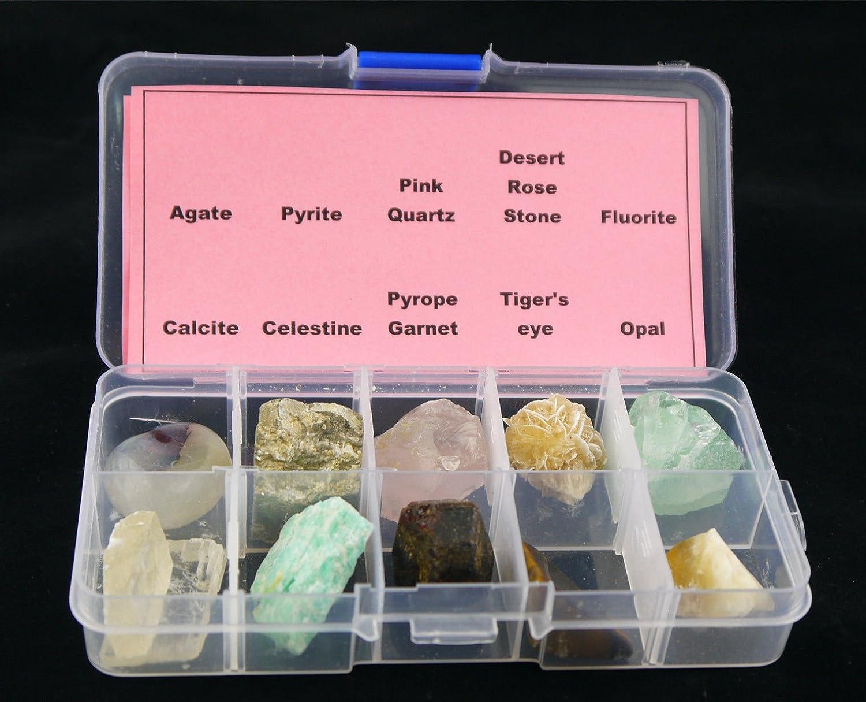 10 piezas diferentes muestras Mineral Piedra con caja de plástico transparente colección Set: Amazon.es: Hogar