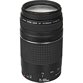 Review Canon EF 75-300mm f/4-5.6