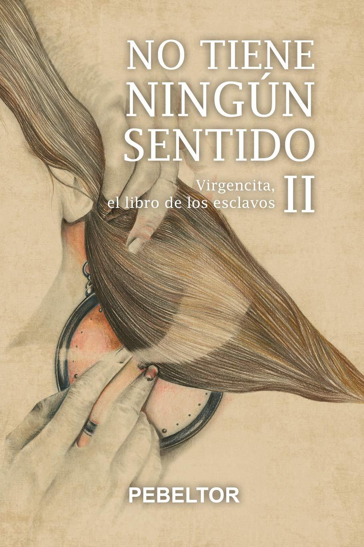 Amazon.com: No tiene ningún sentido: Virgencita, el libro de ...