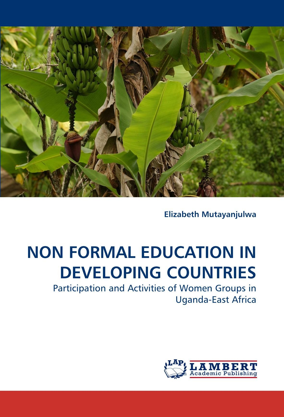Read Online NON FORMAL EDUCATION IN DEVELOPING COUNTRIES: Participation and Activities of Women Groups in Uganda-East Africa PDF