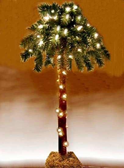 amazoncom 18 lighted palm tree artificial 35 lights electric table top home kitchen - Palm Christmas Tree