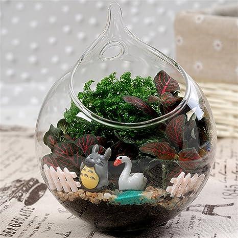 Ohpa Jarrón para colgar flores, diseño de pecera de cristal transparente