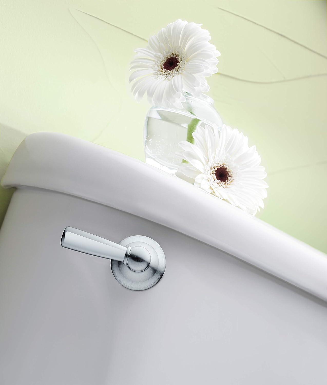 Brushed Nickel Moen DN6801BN Sage Inspirations Toilet Tank Lever