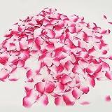 Doutop 花びら 1000枚セット 桜吹雪 造花 バラ 薔薇 飾り 結婚式 誕生日 ウエディング パーティー クリスマス 撮影 演出小物 お祝い シルク 10色 ピンク グラデーション