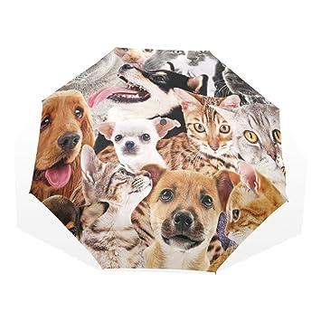 GUKENQ Paraguas de Viaje para Perros, Gatos, Ligero, Anti Rayos UV, Paraguas