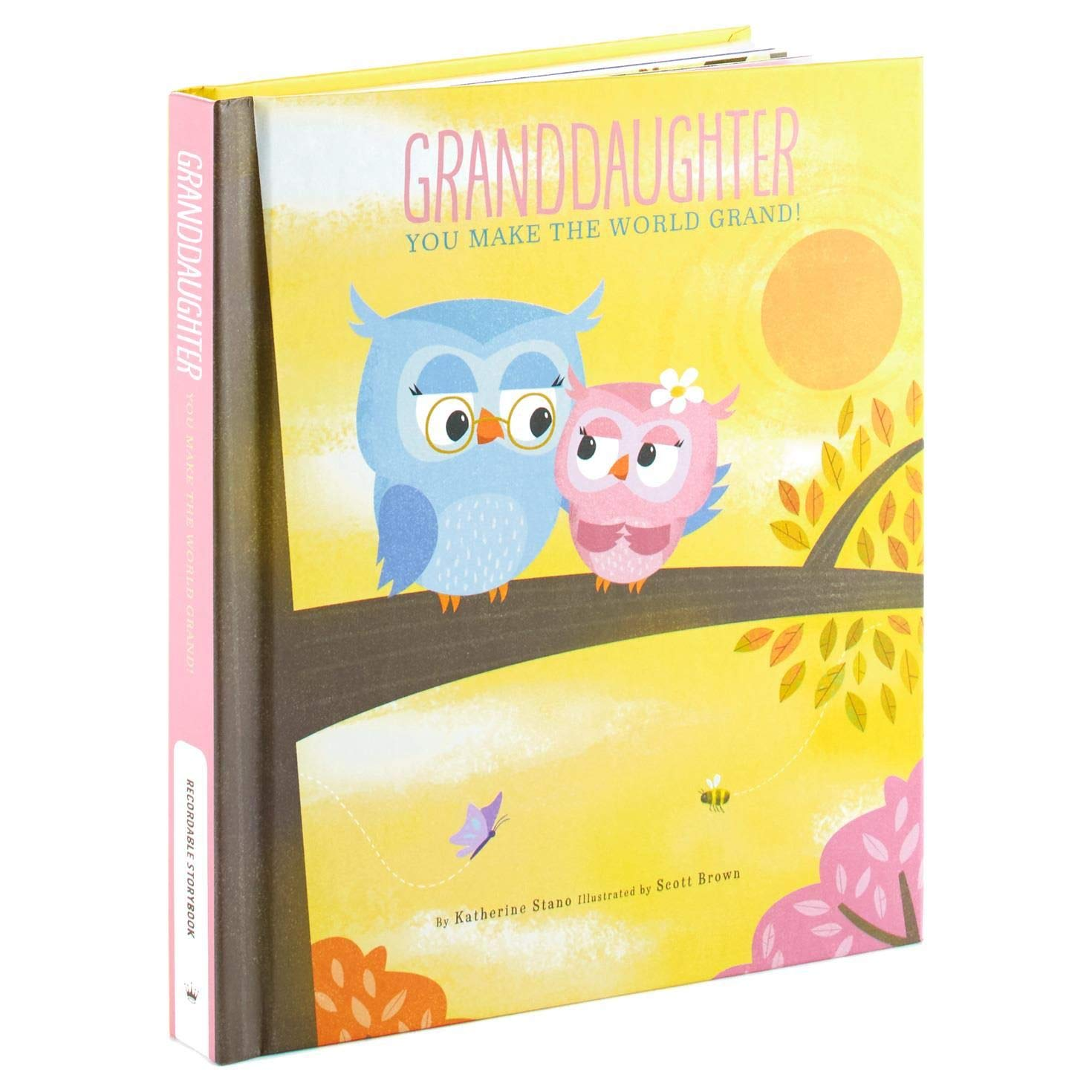 Hallmark Granddaughter You Make The World Grand! Recordable Storybook Recordable Storybooks Juvenile Fiction by Hallmark (Image #1)