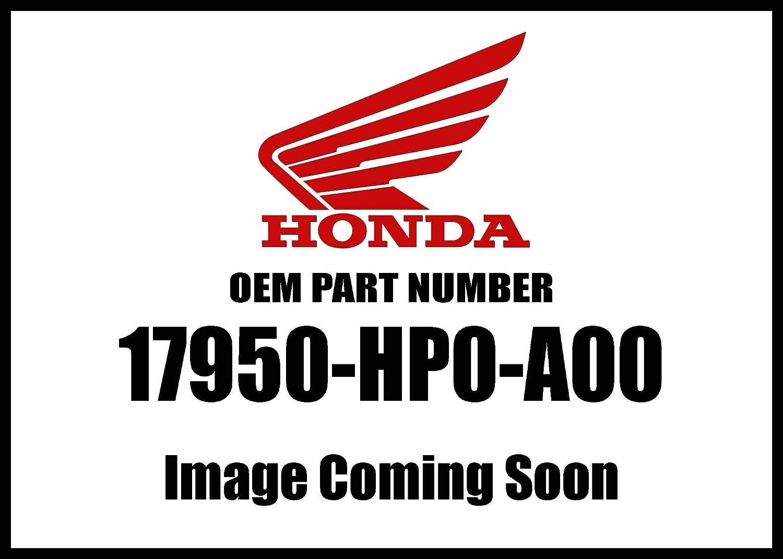 Honda 17950-ZS9-003 Cable Choke