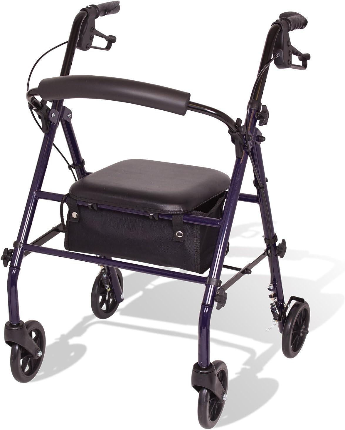 Amazon.com: Carex - Carretilla de acero con asiento y ruedas ...