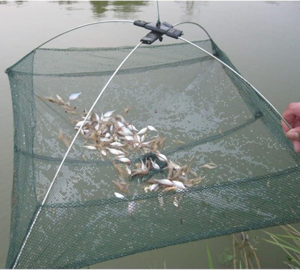 Fischernetz Mesh-fischfalle Zusammenklappbaren Fischk/äfig Angeln Kescher Angel Korb F/ür Das Halten K/öder Crayfish Crab Fische Stint Minnows Shrimp 25cm